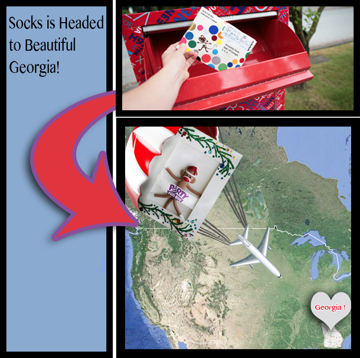 Socks is Headed to Georgia!