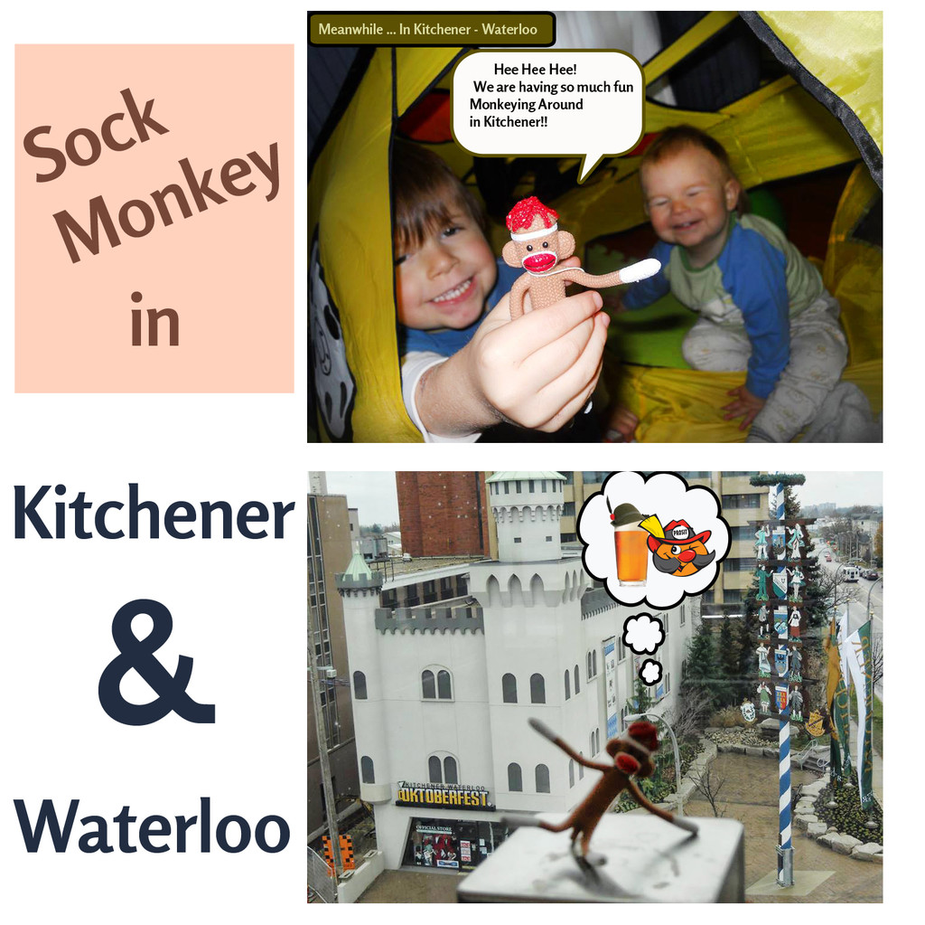 Socks in Kitchener!