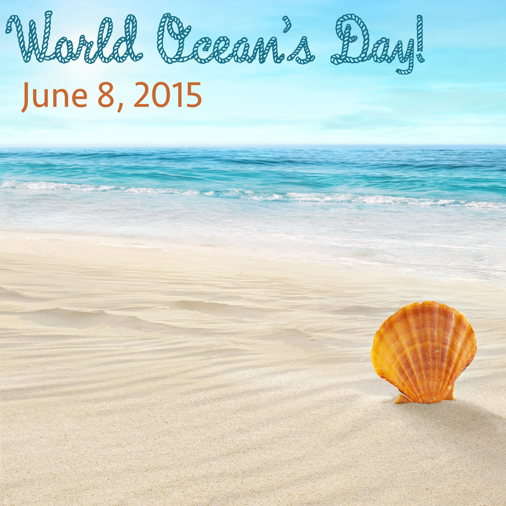 It's World Ocean Day!